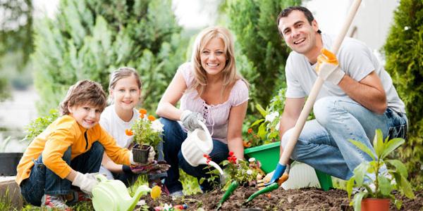 Hasil gambar untuk berkebun bersama keluarga